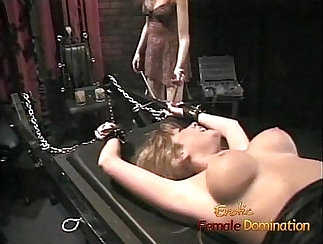 Pussies of different types showcased in free XXX movies